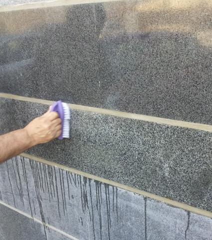 Guard Remover Eco מסיר תפרחת בטון